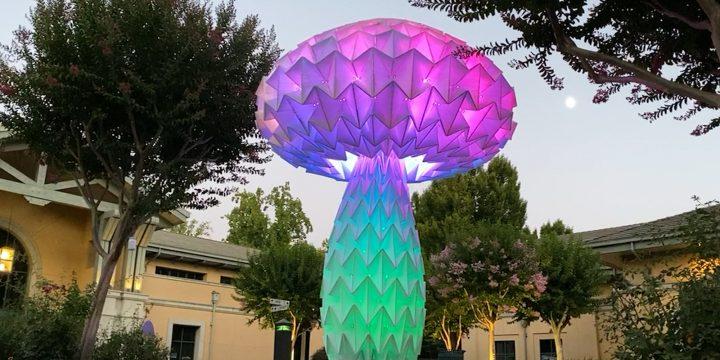 تیم هنری Bay Area برای لذت بردن از دنیا ، هنرهای بزرگ اریگامی را ایجاد می کند